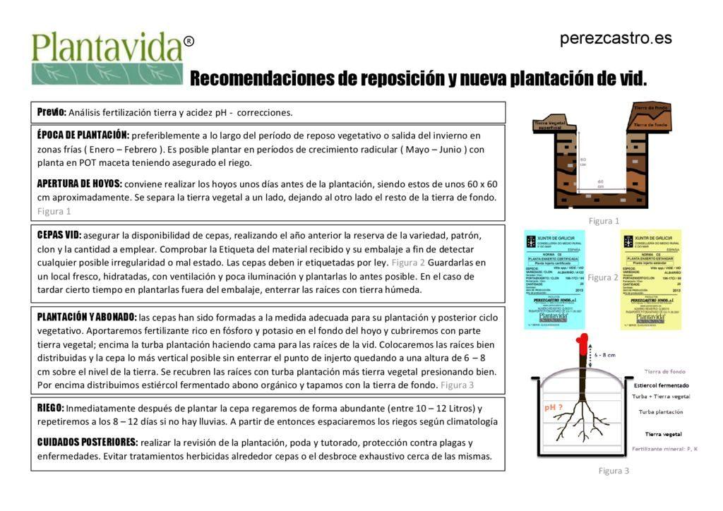 thumbnail of Plantavida® recomendación plantación vid